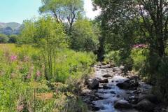 La rivière Dordogne prend sa source dans le Massif Sancy
